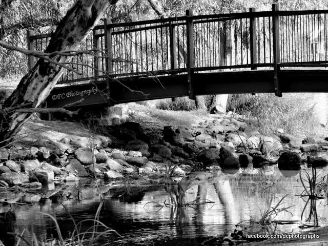 Balyang Sanctuary, Geelong, 2015