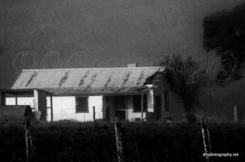 Fog, Old House