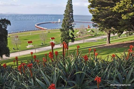 Geelong Foreshore