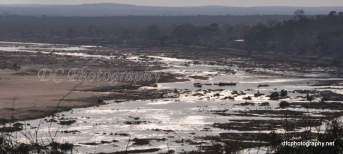 Olifants River_0307