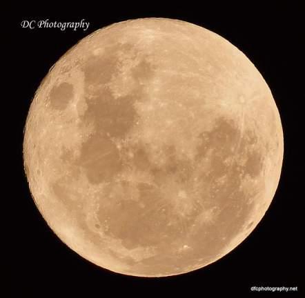 November Moon_0004