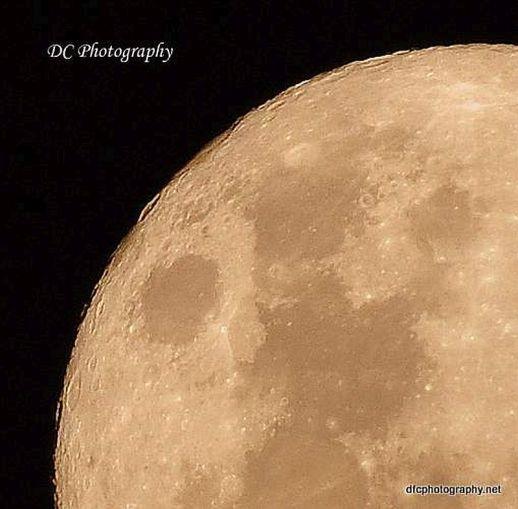 November Moon_0004a8