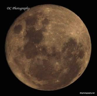 November Moon_0018