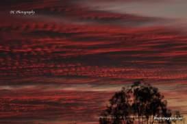 November Sunset_0003