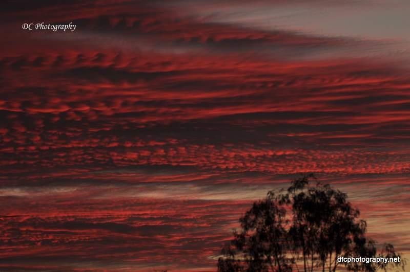 sunset_0003
