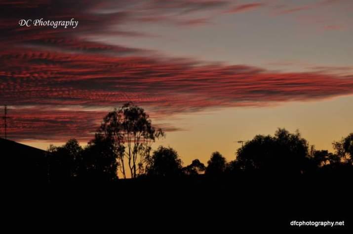 November Sunset_0006
