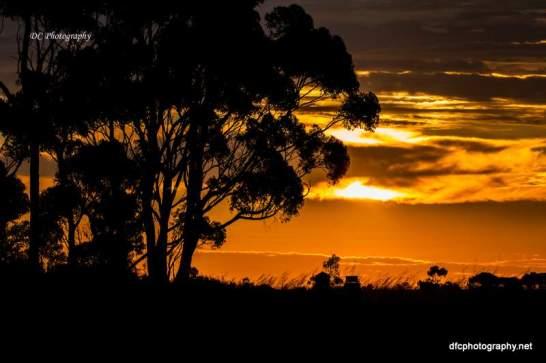 sunset8_0801