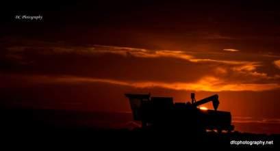 sunset8_0815