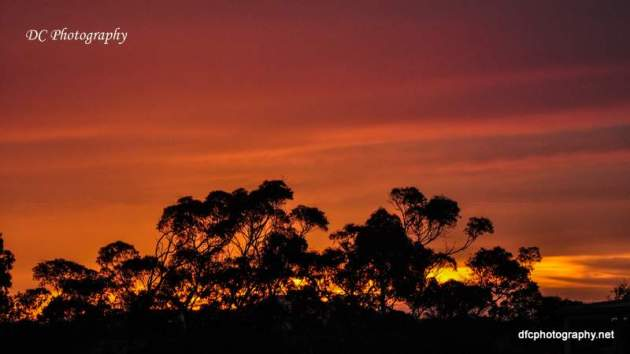 Sunrise_0004b-pe14