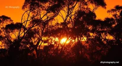 Sunrise_0015