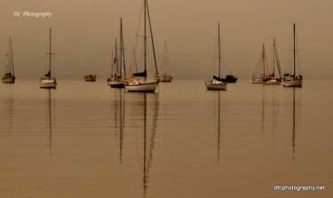 Corio_Bay-Fog_0031