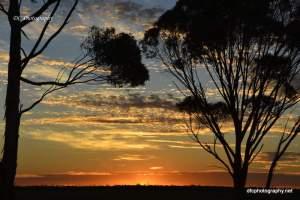 sunsetbb_220117_4232