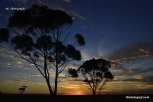 sunsetbb_220117_4233