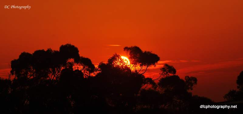 sunrise_0171a