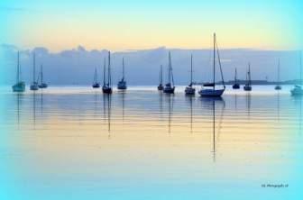 Corio-Bay-160218