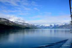 Glacier-Bay_Alaska_7298