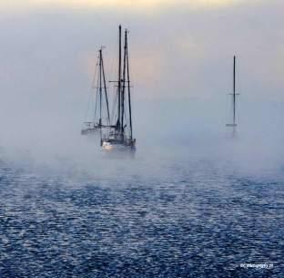 Foggy sunrise, Corio Bay