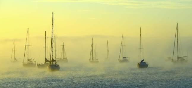 Sunrise Corio Bay